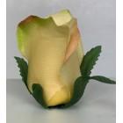 Róża wyrobowa PALOMA 12 szt. kolor HG1