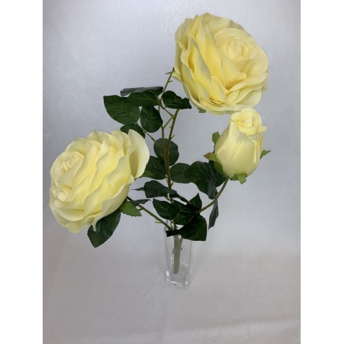Bukiet Róża X 3 gigant kolor 1