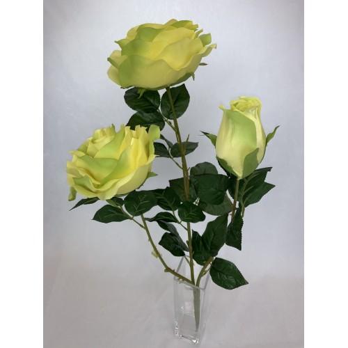 Bukiet Róża X 3 gigant kolor 2