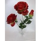 Bukiet Róża X 3 gigant kolor 6