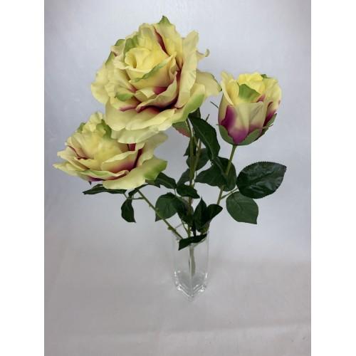 Bukiet Róża X 3 gigant AFL0688 kolor 2